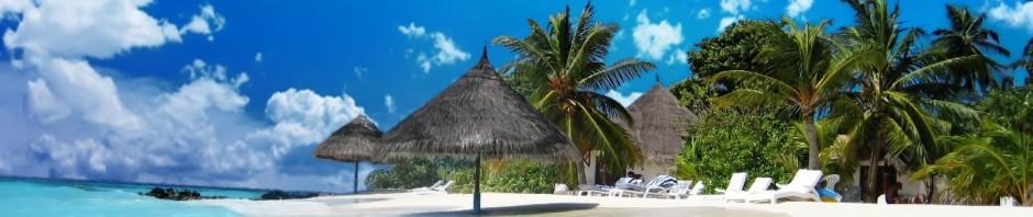 cropped-paradise